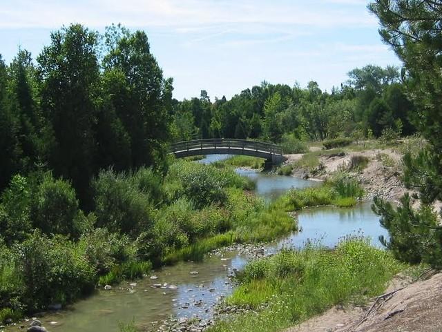 The Little Sauble River in Inverhuron Provincial Park